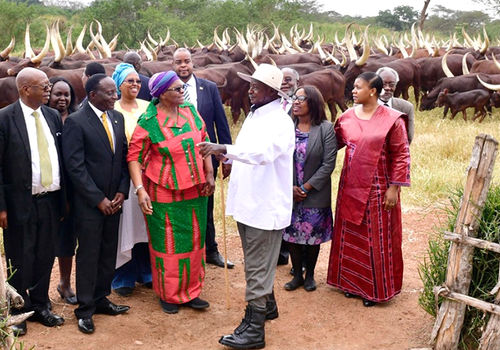 Namibia's Foreign Minister Netumbo Nandi-Ndaitwah was on a working visit in Uganda in August, where President Yoweri Museveni (in white shirt) invited her to his farm and proudly displayed his cattle. Photo by: MIRCO Namibia