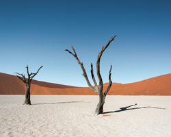 3 Day Sossusvlei Safari Shuttle (Namib Desert Lodge)