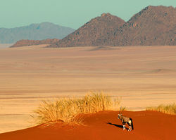 Namibia Honeymoon Package